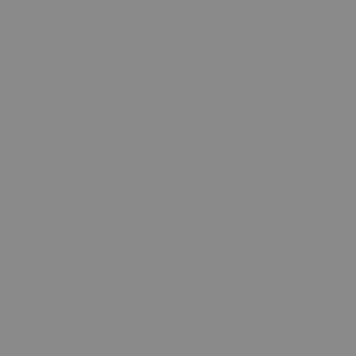 6110 - Korpus Mittelgrau